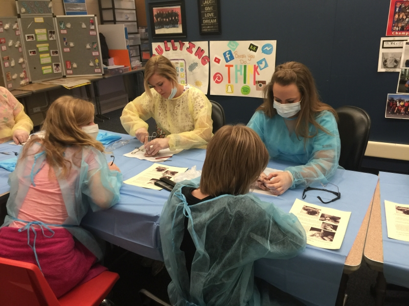 SCTC-OHCAP-Dissection-4-26-16 (13)